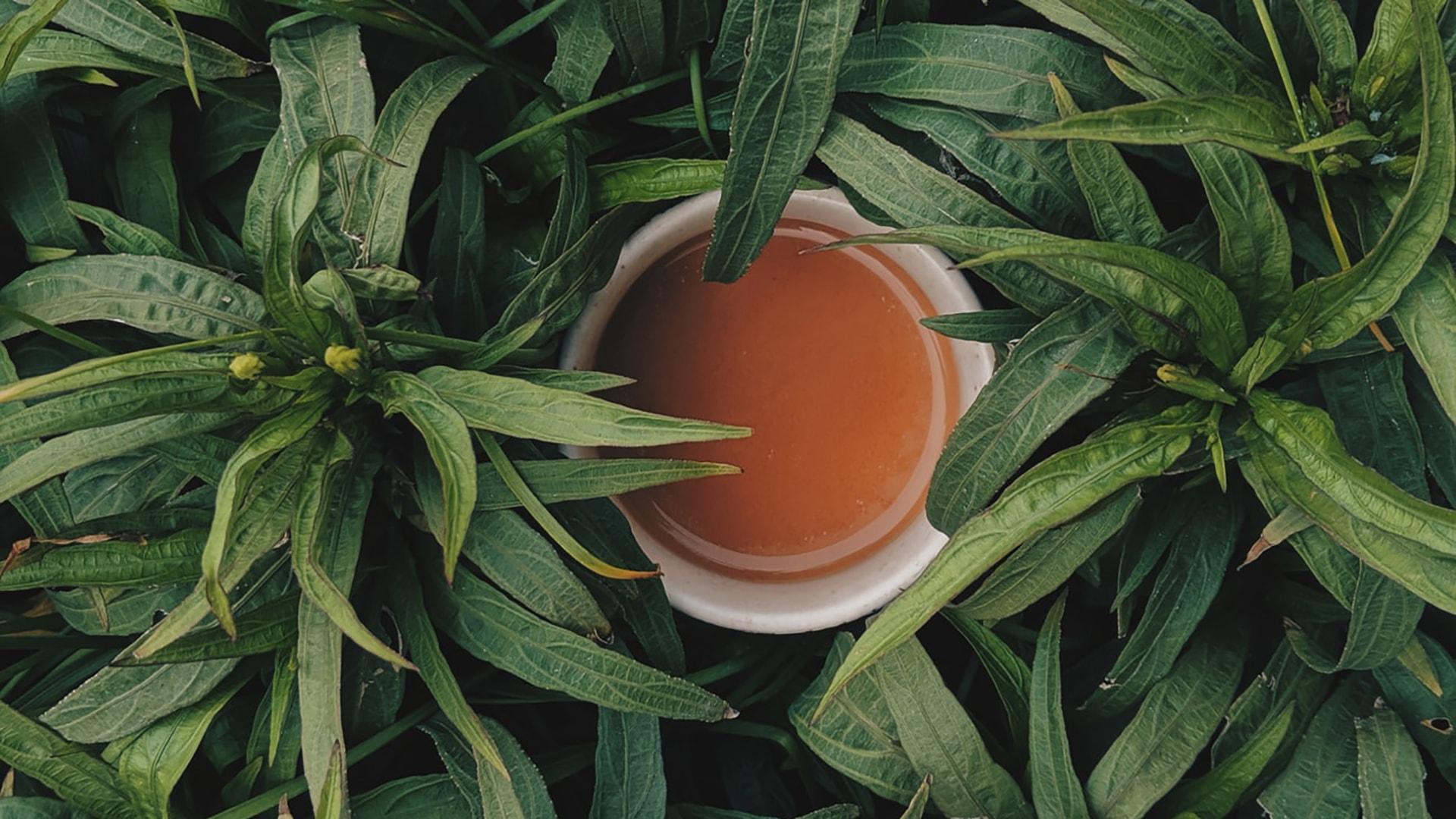 茶饮品牌命名